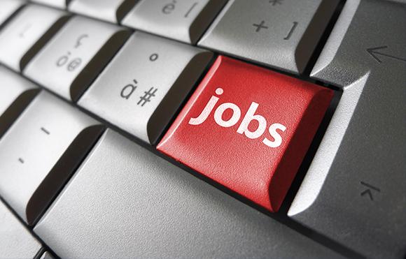 5 puntos principales para obtener un empleo en el área de TI