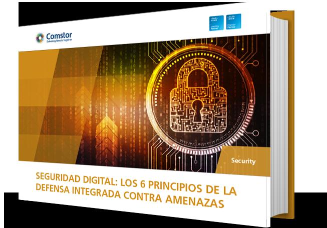 Seguridad digital los 6 principios de la defensa integrada contra amenazas