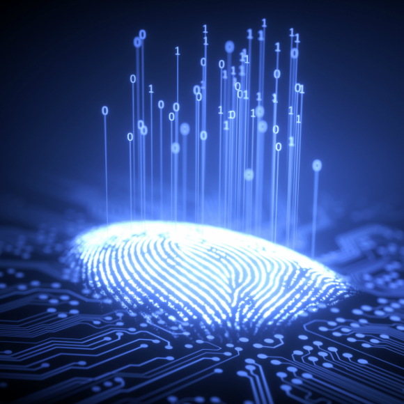 ¿Qué es la Gestión de Identidades y Accesos (IAM)?