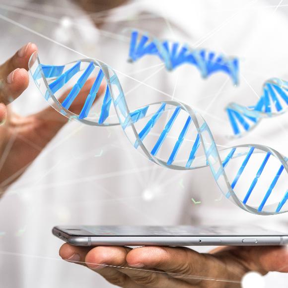 ¿Qué tenemos que buscar en las Arquitecturas Digitales de Red (DNA)?