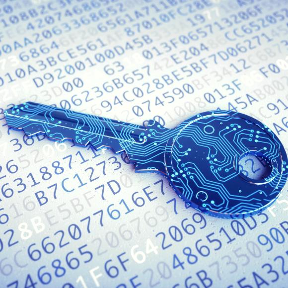 Los registros financieros son los datos que más utilizan criptografía en México.