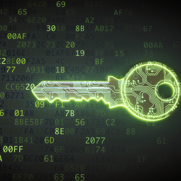 5 curiosidades sobre seguridad cibernética en las empresas de México