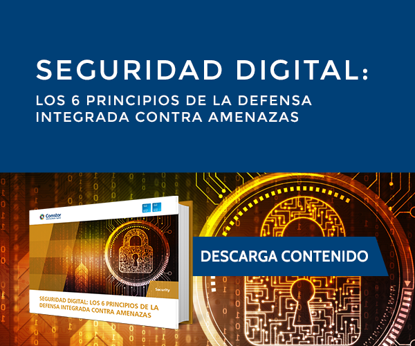 Seguridad digital los 6 principios de la defensa integrada contra amenazas